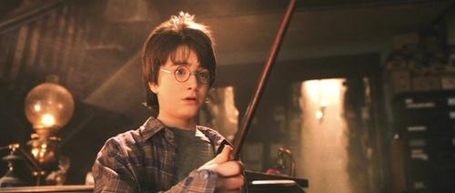 Harry Potter at EssayPedia.com